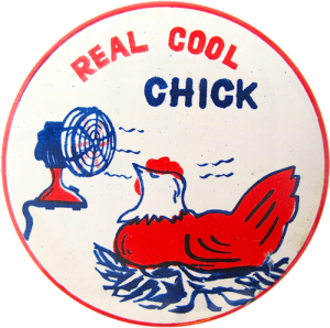 CoolChicken